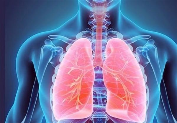 ریه و 15 ماده غذایی برای تقویت سلامت آن
