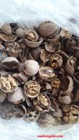 تناژ انواع گردو بادام سماق و کشک مرغوب موجود است