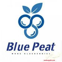بستر کشت بلوبری بلوپیت BluePeat