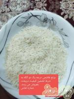 فروش برنج هاشمی درجه یک